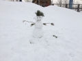 ГЛК Холдоми. Снеговичок